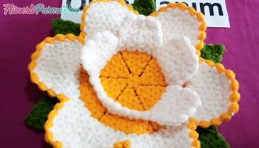Kabak Çiçeği Lif